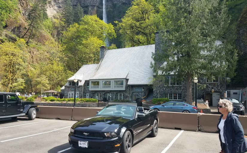Mustang at Multnomah Falls